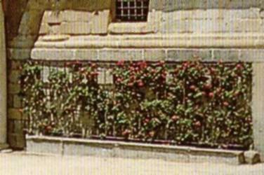 Vista de los enrejados en el jardín del Monasterio de El Escorial.