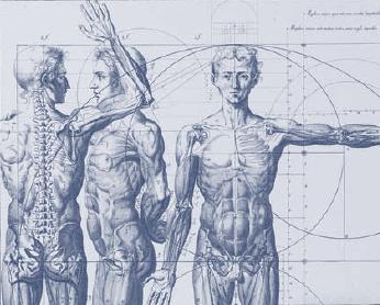 """""""Imágenes del cuerpo en la Edad Moderna"""" en el Museo del Prado"""