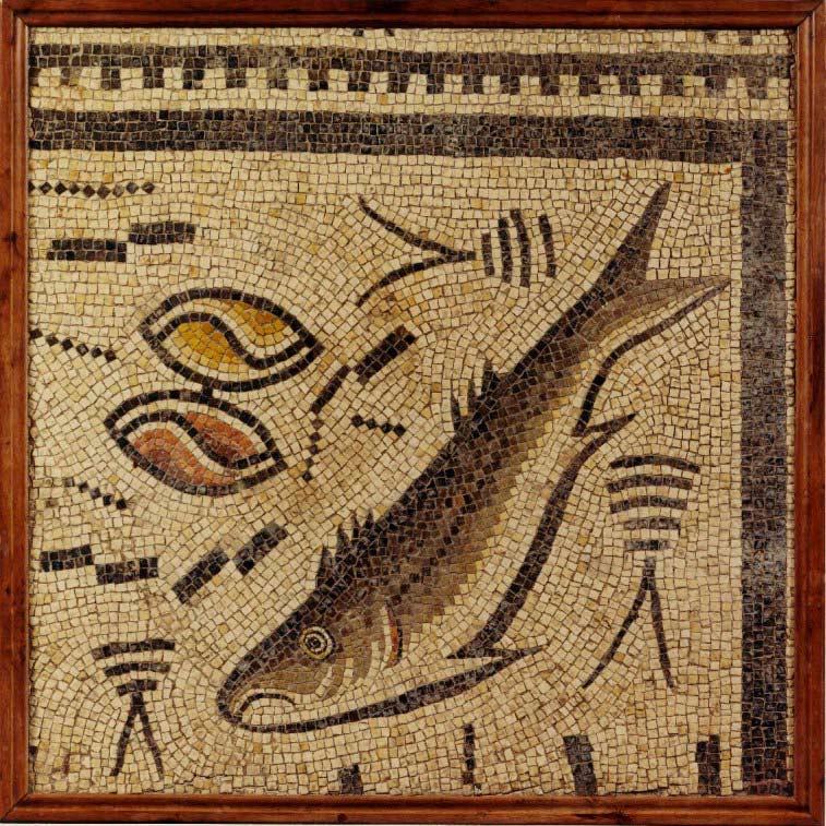 Ayúdanos a recuperar el mosaico romano de Panxón